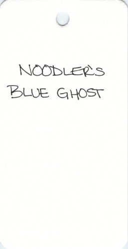 * NOODLERS BLUE GHOST SPECIALTY INK